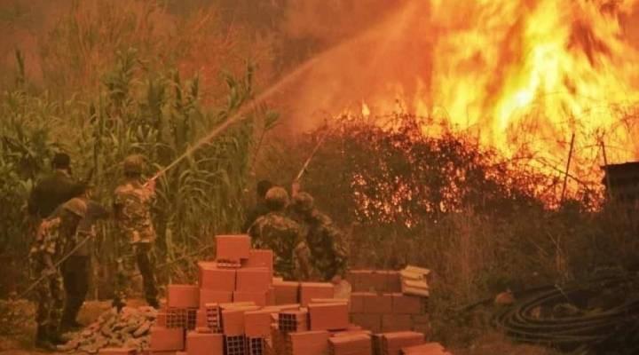 Cezayir'deki yangınlarda 69 kişi hayatını kaybetti
