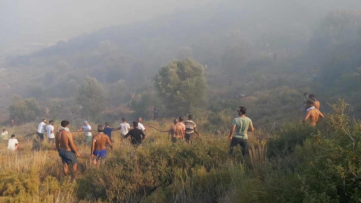 Datça'da makilik ve zeytinlik alanda yangın çıktı