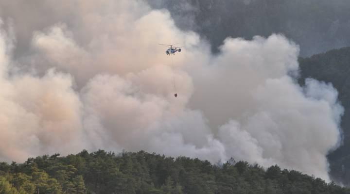 Orman yangınları| Milas ve Köyceğiz'de yangınlar devam ediyor